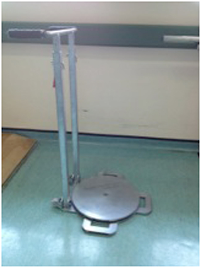 Frontiers  The Use of the SelfStanding Turning Transfer