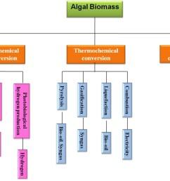 www frontiersin org figure 1 algal biomass conversion process for biofuel production  [ 1323 x 991 Pixel ]