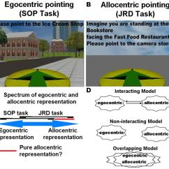 Spatial Diagram Of Fast Food Krone Rj12 Wiring Frontiers A Critical Review The Allocentric Www Frontiersin Org