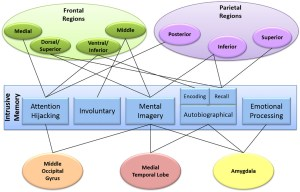 Frontiers | Mental Imagery and PostTraumatic Stress