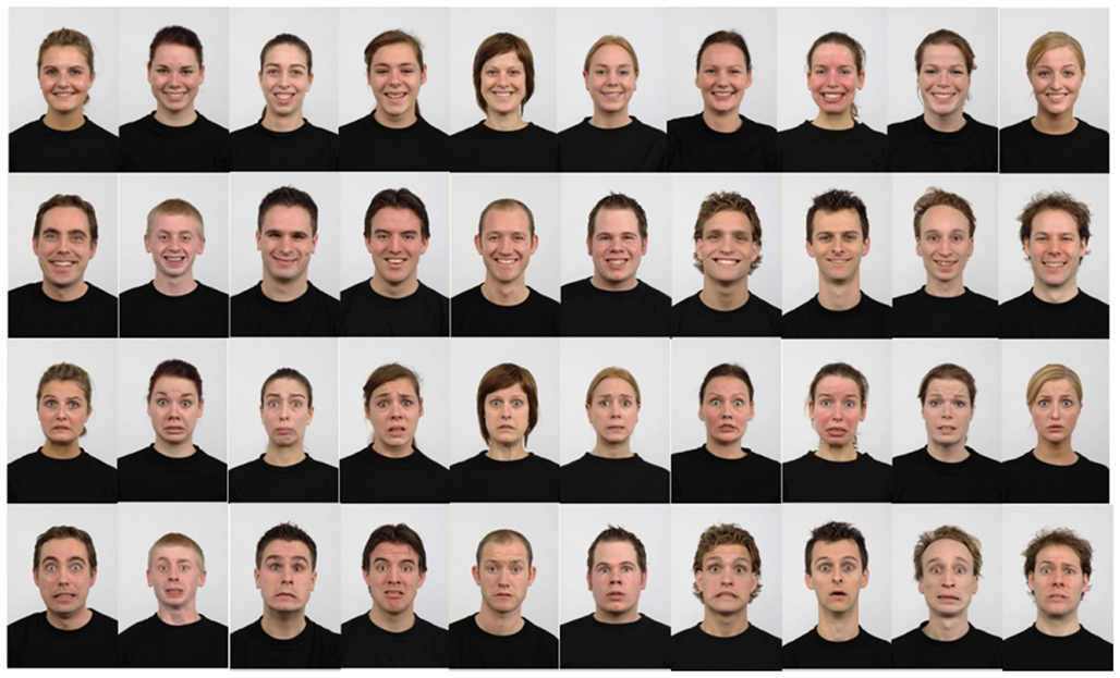 Frontiers Selectivity Of Face Distortion Aftereffects