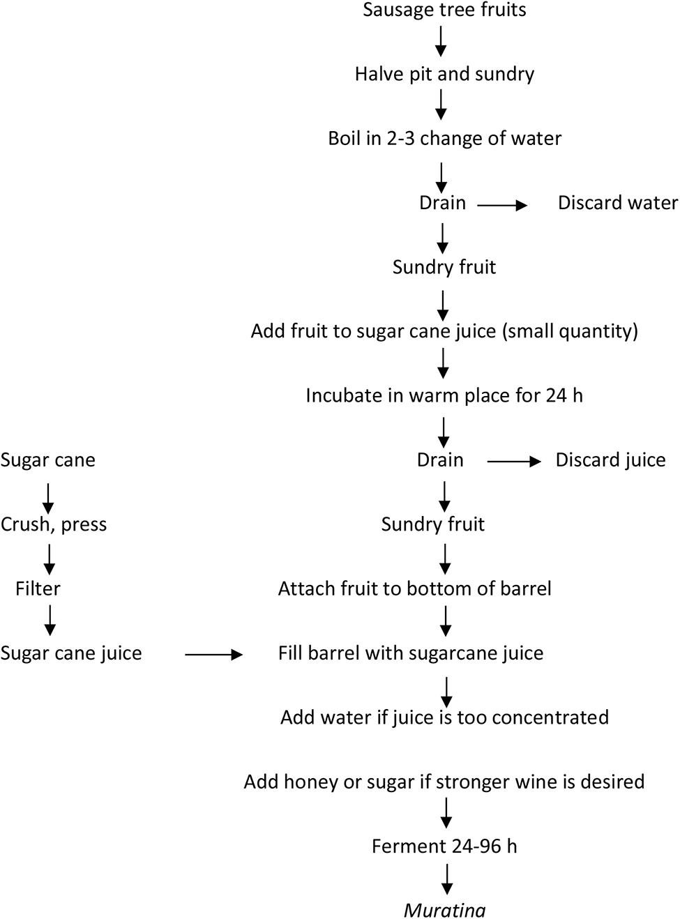 medium resolution of www frontiersin org figure 1 flow diagram of fermented sausage tree fruit
