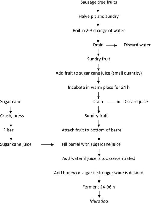small resolution of www frontiersin org figure 1 flow diagram of fermented sausage tree fruit