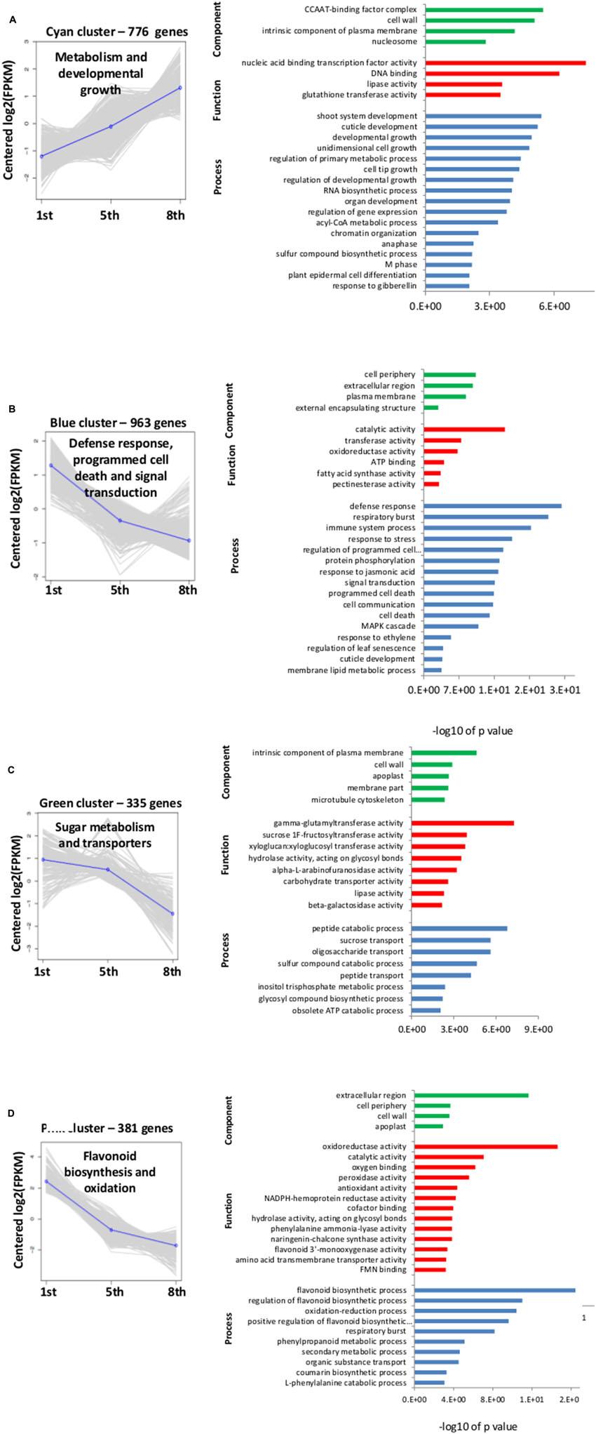 medium resolution of www frontiersin org