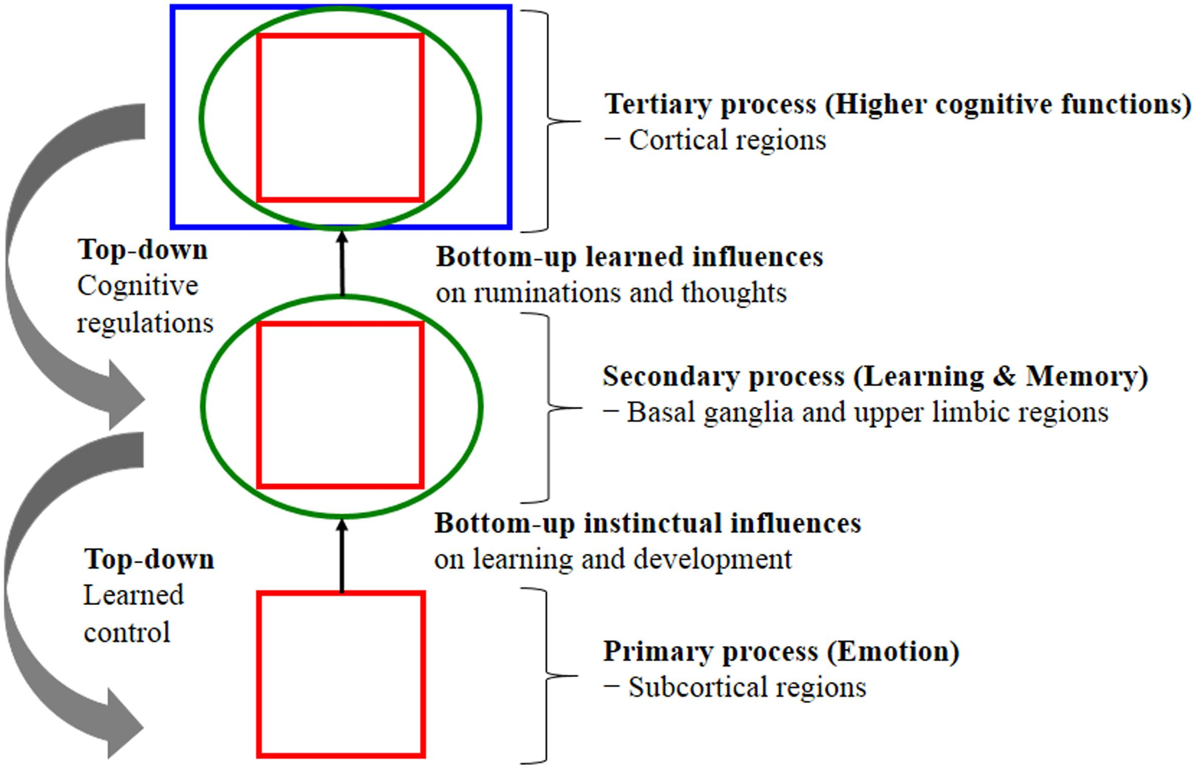 Factors Affecting Motor Learning