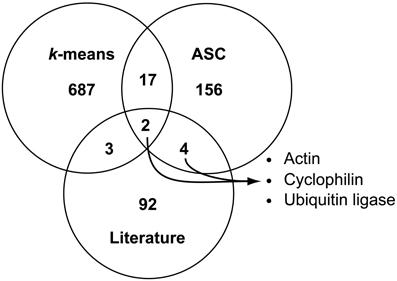Buy Original Essay & literature review venn diagram