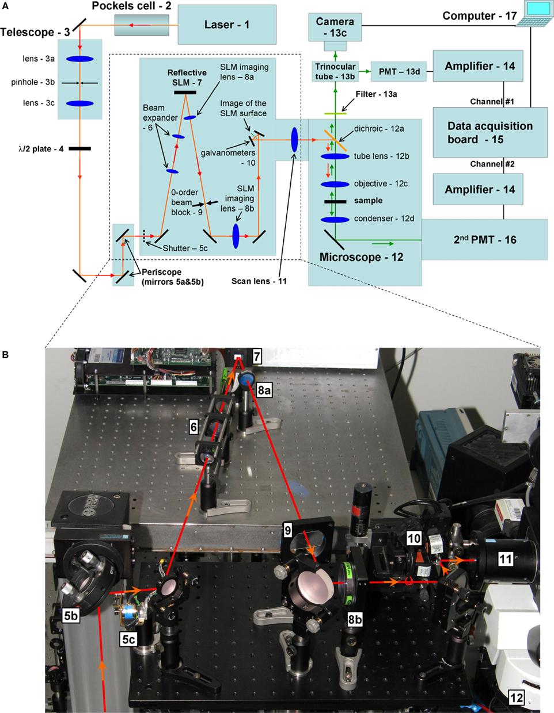 Figure C7 Signal Generator Circuit A Circuit Diagram For The
