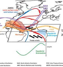 www frontiersin org figure 3 schematic  [ 1850 x 1287 Pixel ]