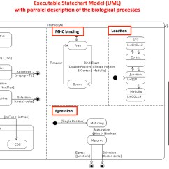 Visio Activity Diagram Ford Mondeo Mk2 Stereo Wiring Uml Ex Le Drawing An