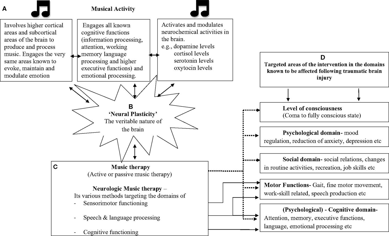 Brain Injury Printable Worksheet