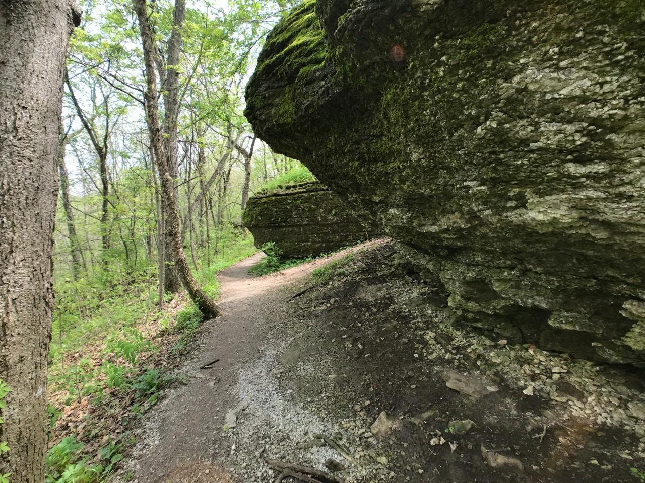 Bethany Falls Hiking Trail