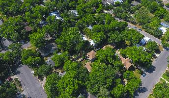 Hyde Park Neighborhood Listings
