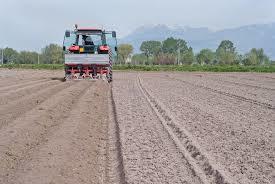 AGRICOLTURA. REGIONE LAZIO: OLTRE 50 MLN RISORSE UE PER PIÙ DI 300 IMPRESE.