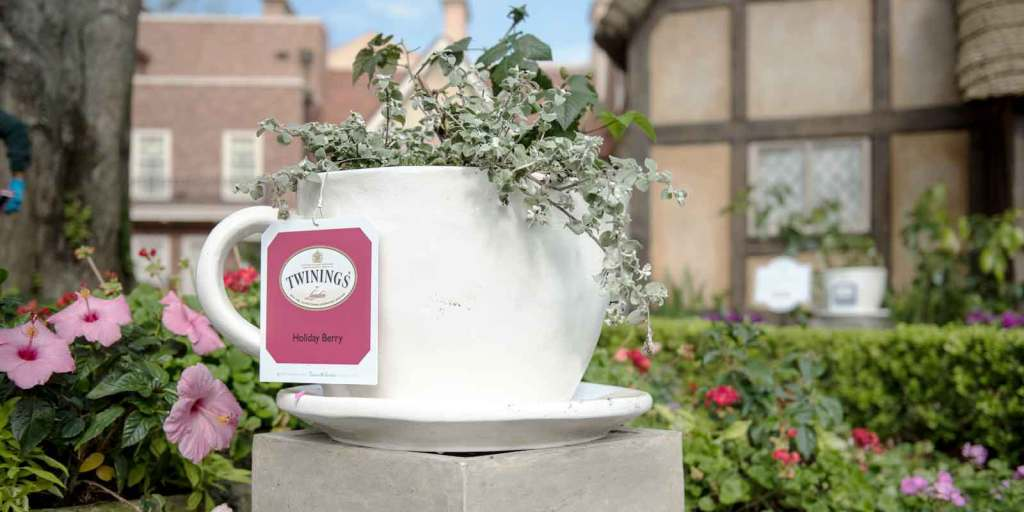 Close up of a gigantic white teacup shaped planter with a green plant growing out of it and a faux Twinings teabag tag.