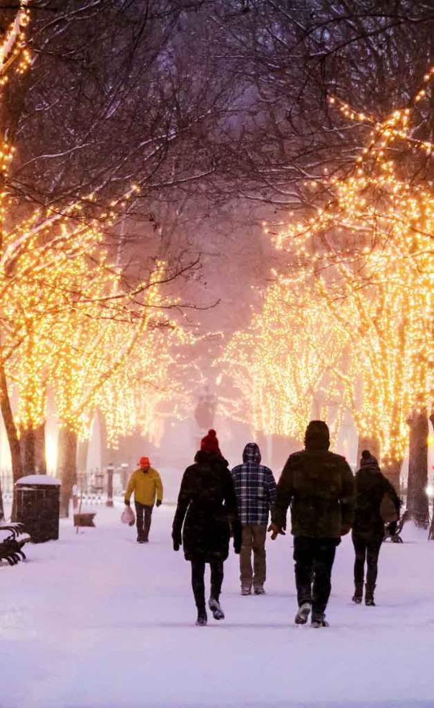 Photo of people walking down the pathway through the Commonwealth Ave park in Back Bay on a snowy evening with bare trees covered in yellow holiday lights.