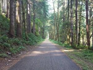 CampCreekStraightaway-IrisWinslow
