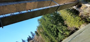 ODT Elwha River Bridge