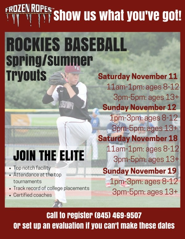 Travel Baseball Try Out Flyer