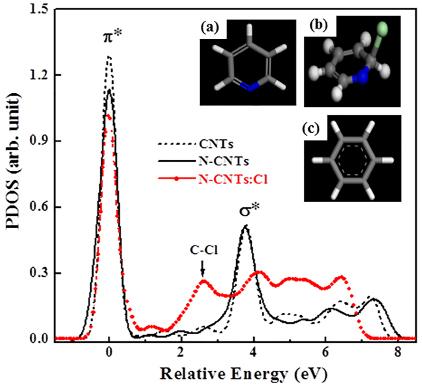 Nitrogenated Carbon Nanotubes Functionalized with Chlorine