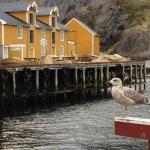 Nusfjord Lofoten Noorwegen Fru Amundsen