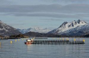 Zalmkwekerij Noord-Noorwegen