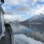 Natuursafari, Noord-Noorwegen, Fru Amundsen
