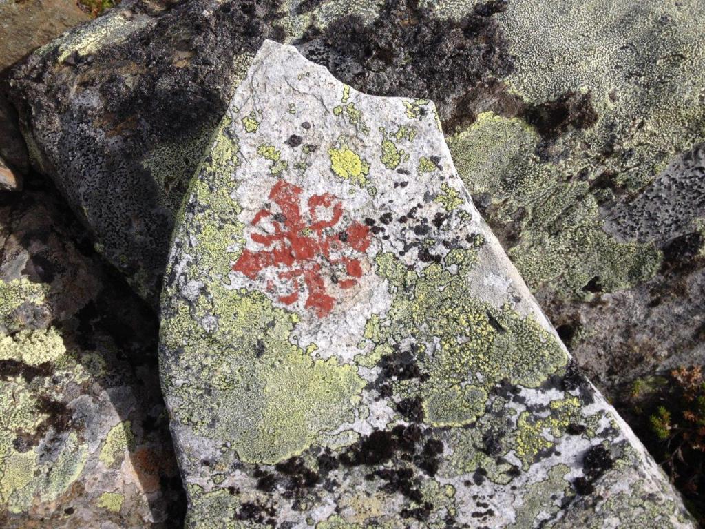 Logo pelgrimspad, Noorwegen, Fru Amundsen