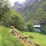 Wandelen langs de fjord, Noorwegen, Fru Amundsen