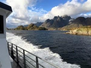 Natuursafari Lofoten, Noorwegen, Fru Amundsen