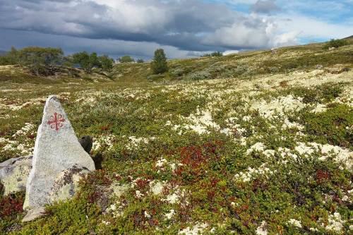Dovrefjell, hoogtepunt Olavspad. Foto: Fru Amundsen ©