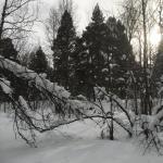 Gargia, Finnmark, Noorwegen
