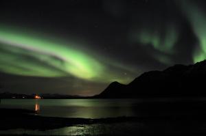 Noorderlicht lofoten Laukvik Fru Amundsen