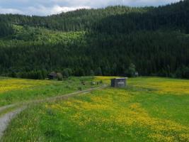 Noorse natuuer tijdens de wandelreis