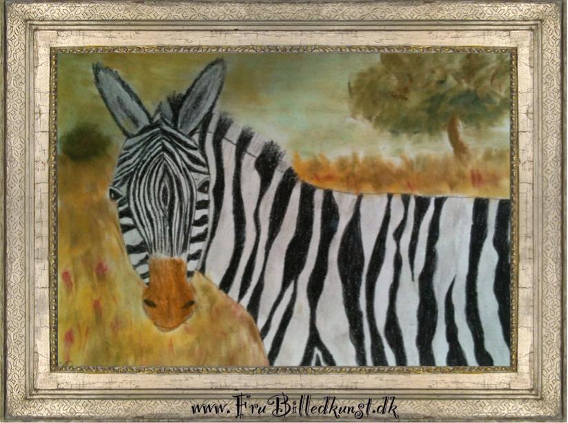 FruBilledkunst zebra SR