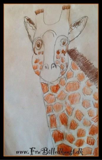 FruBilledkunst giraf - 12årig. Farveblyant.