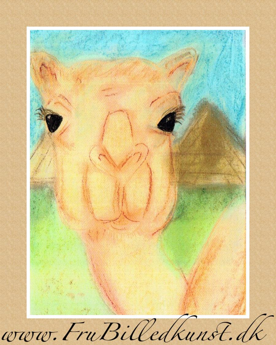 www.FruBilledkunst.dk - kameler 4klasse
