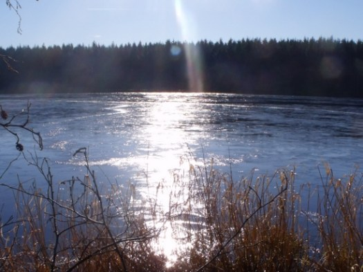 icy loch on the frugal links page