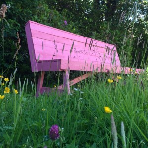 Frugal Living in the UK - the pink bench!