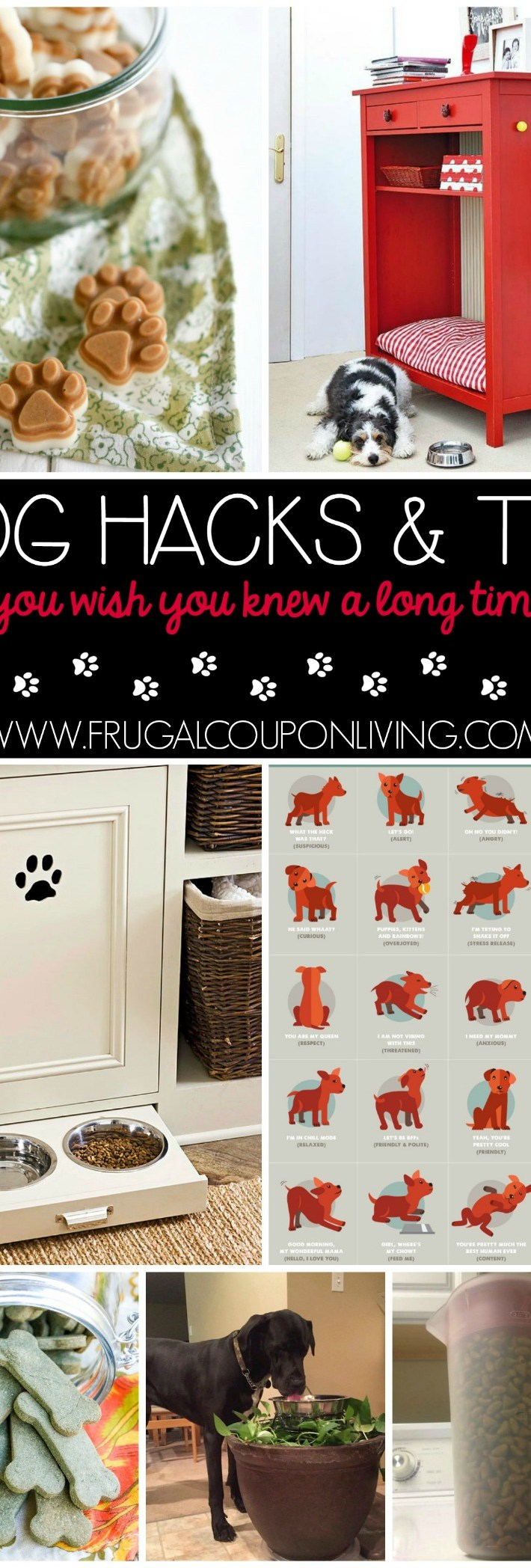 Dog-hacks-tips-frugal-coupon-living-better