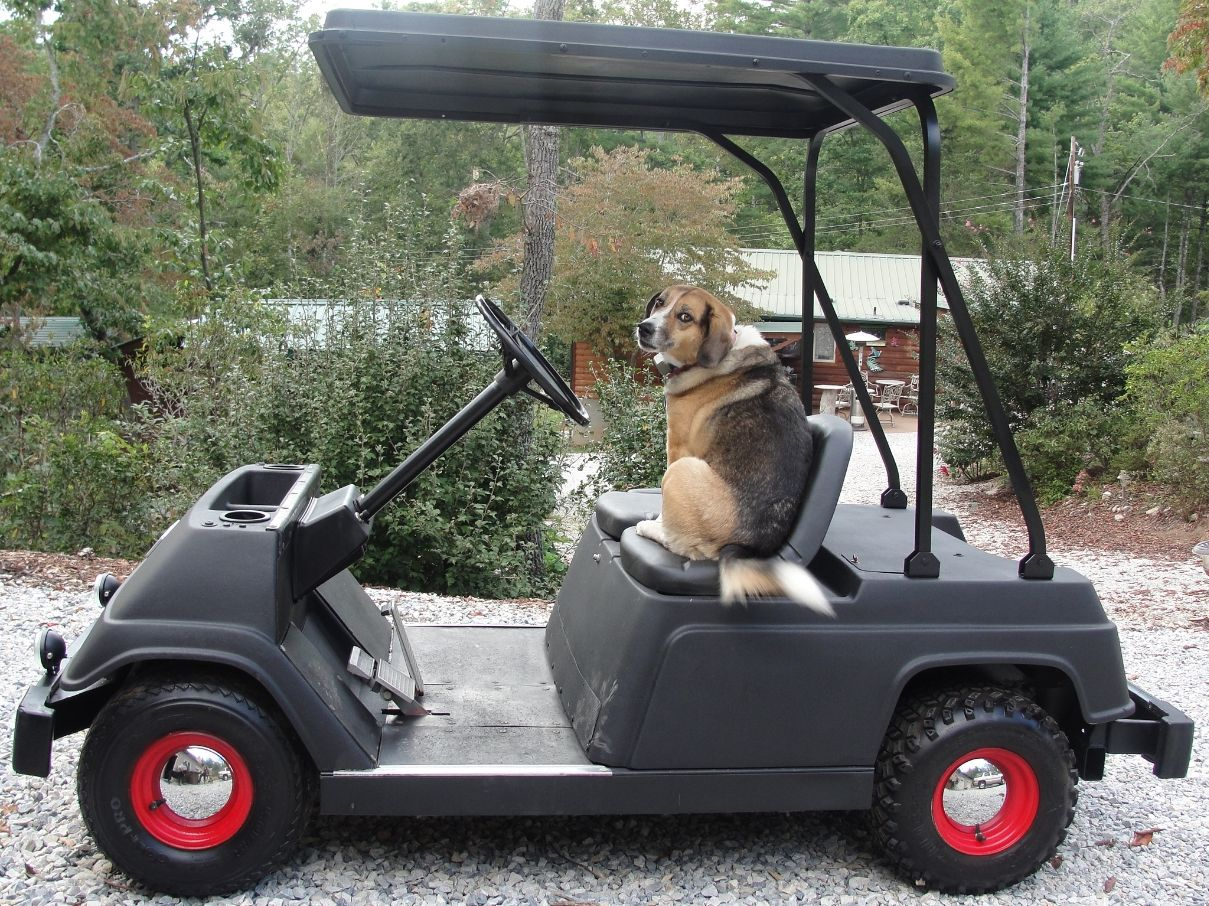 hight resolution of the windshields golf cart