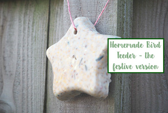Homemade Bird Feeder in a mug – the Christmas version….