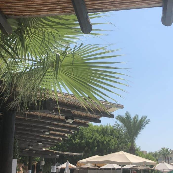 Paphos Gardens
