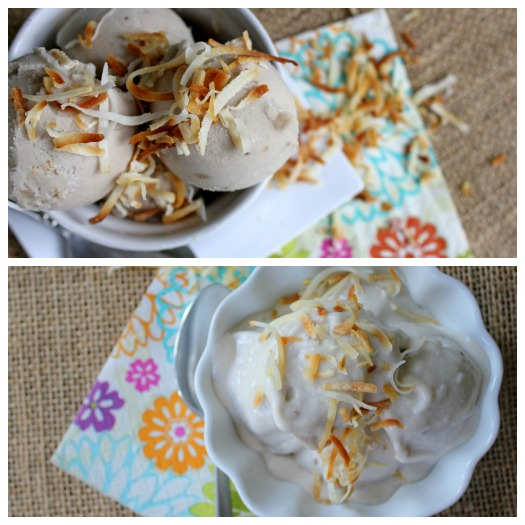 2 Ingredient coconut milk ice cream (Paleo, GF, DF recipe)