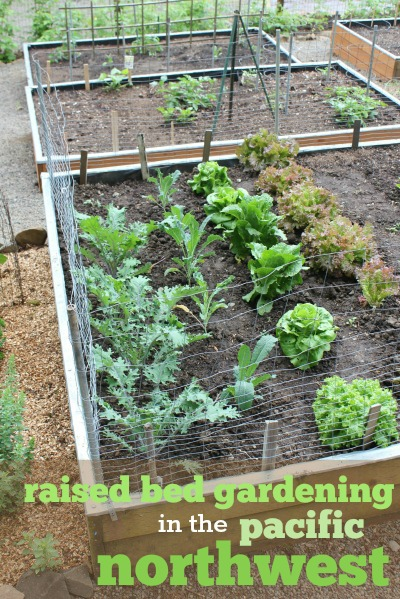How Make Raised Vegetable Garden