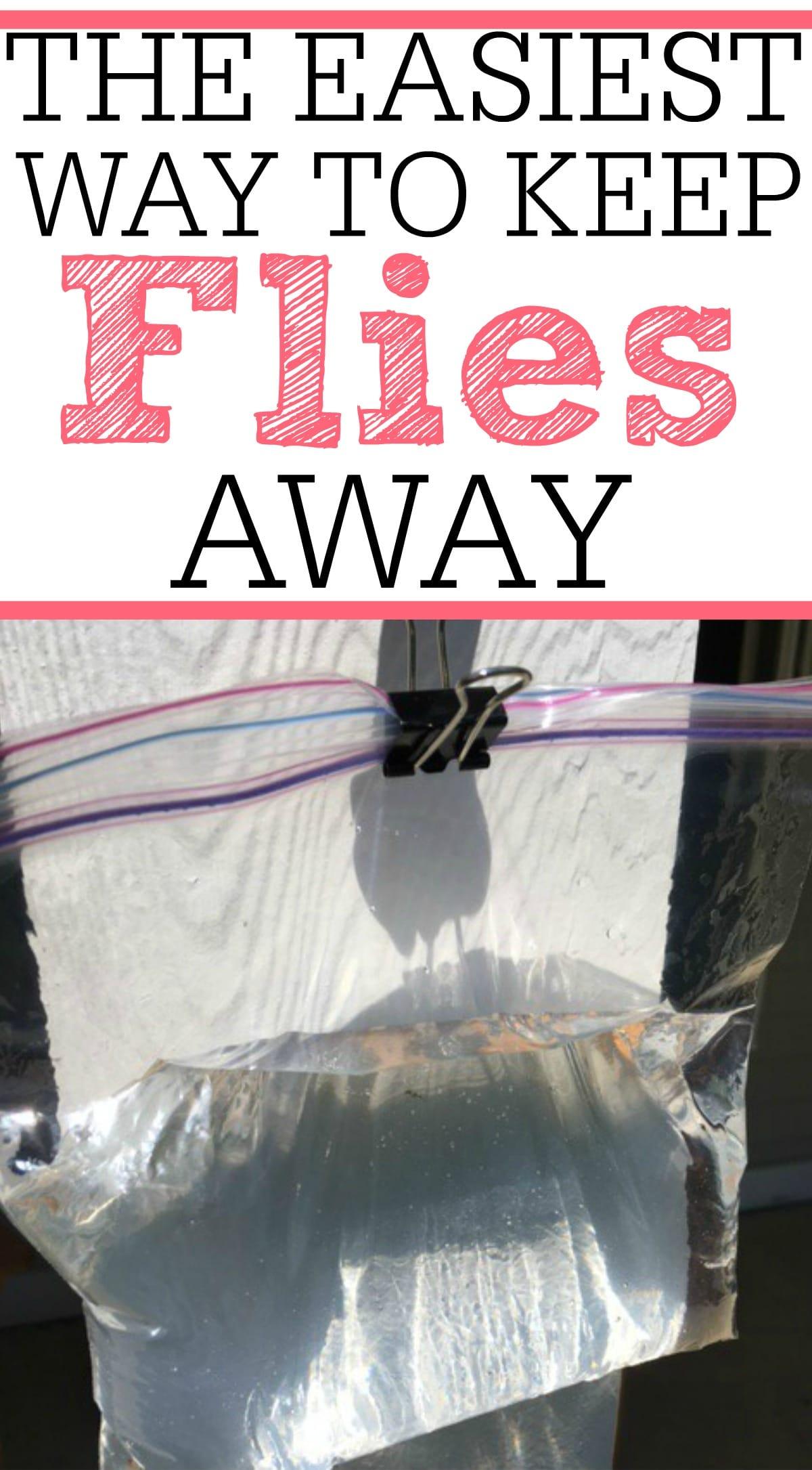 The Easiest Way To Keep Flies Away  Frugally Blonde