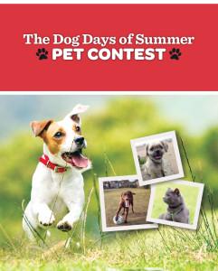 Pet-contest-entry-page-walmart-En-June-15-690