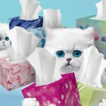 Contest ~ Enter to Win a Case of Scotties 60-count Lotion Facial Tissues!