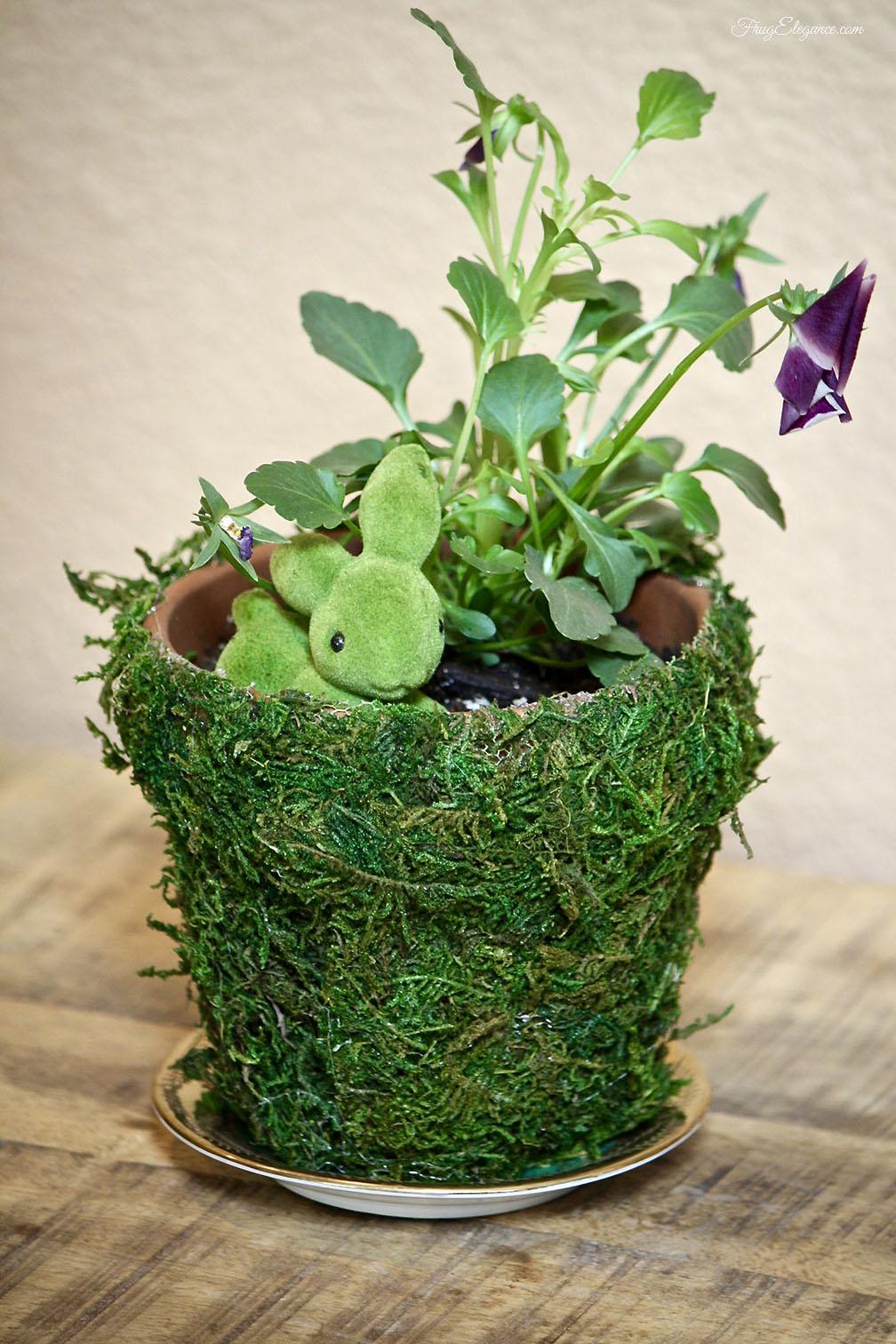 Spring Moss Covered Pots Frugelegance