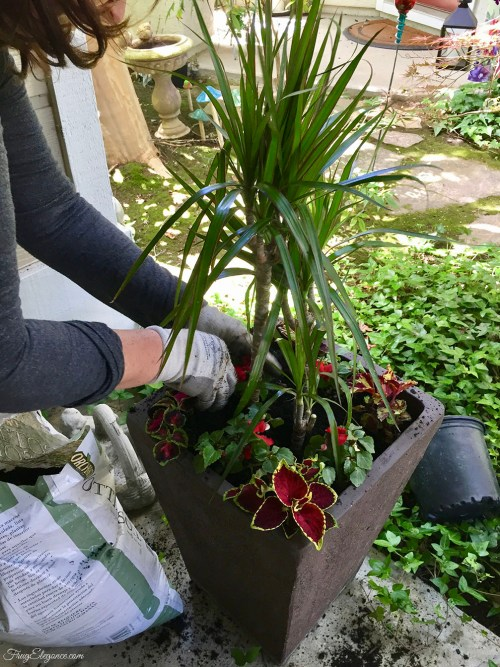 Simple Tips for Planting in a Larger Size Pot by FrugElegance.com
