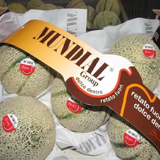 meloni mundial